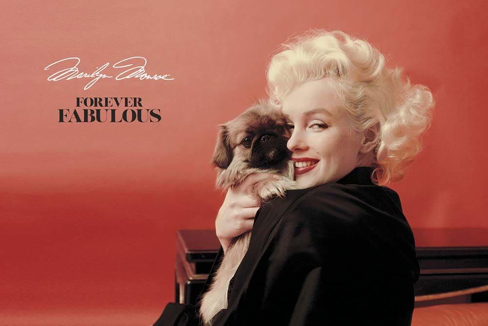 Imagen de la colección Forever Fabulous Marilyn Monroe